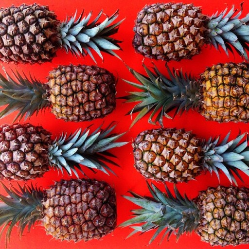 Brittany-Wright-pineapples-512x512-1